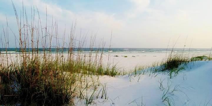 Pensacola Beach sand dunes