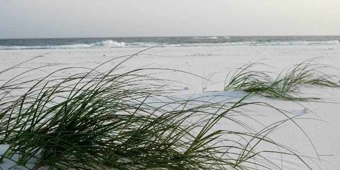 Navarre Beach Lifestyle