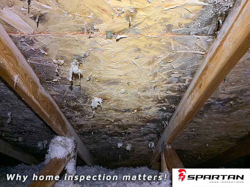 Home inspection image showing mold caused by leaking roof