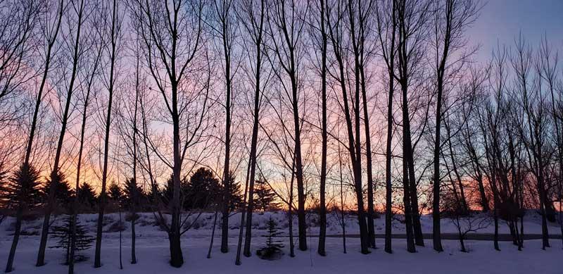 Move to Idaho for beautiful winters.