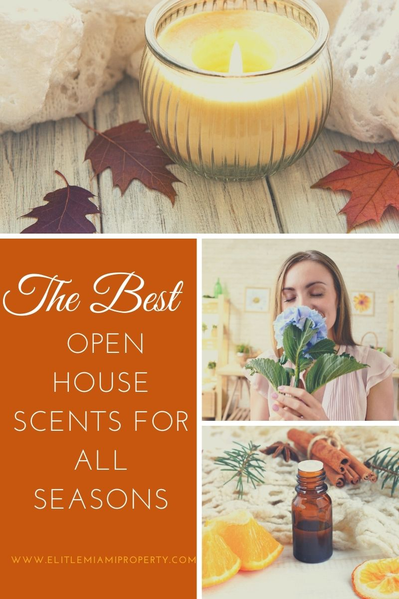 The Best Open House Scents for All Seasons