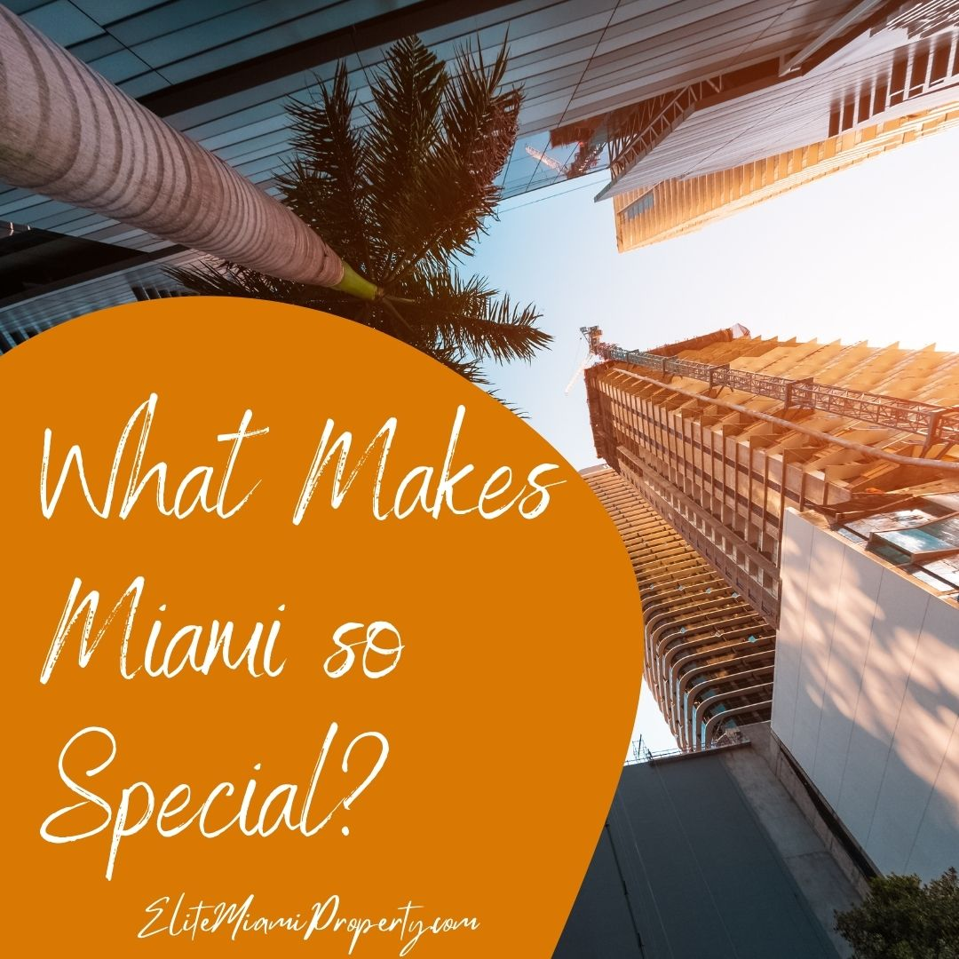 What Makes Miami so Special?