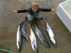 charles william bayer from havelock caught these fish off emerald isle beach nc