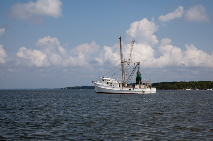 shrimp boat swansboro nc first carolina realtors