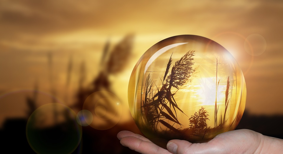 Landscaping Crystal Ball