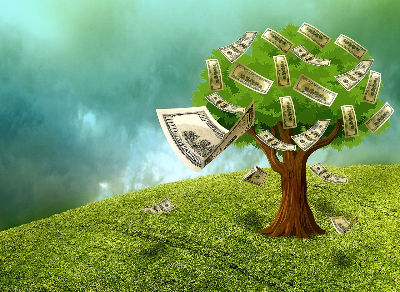 Your Money Tree Is Here