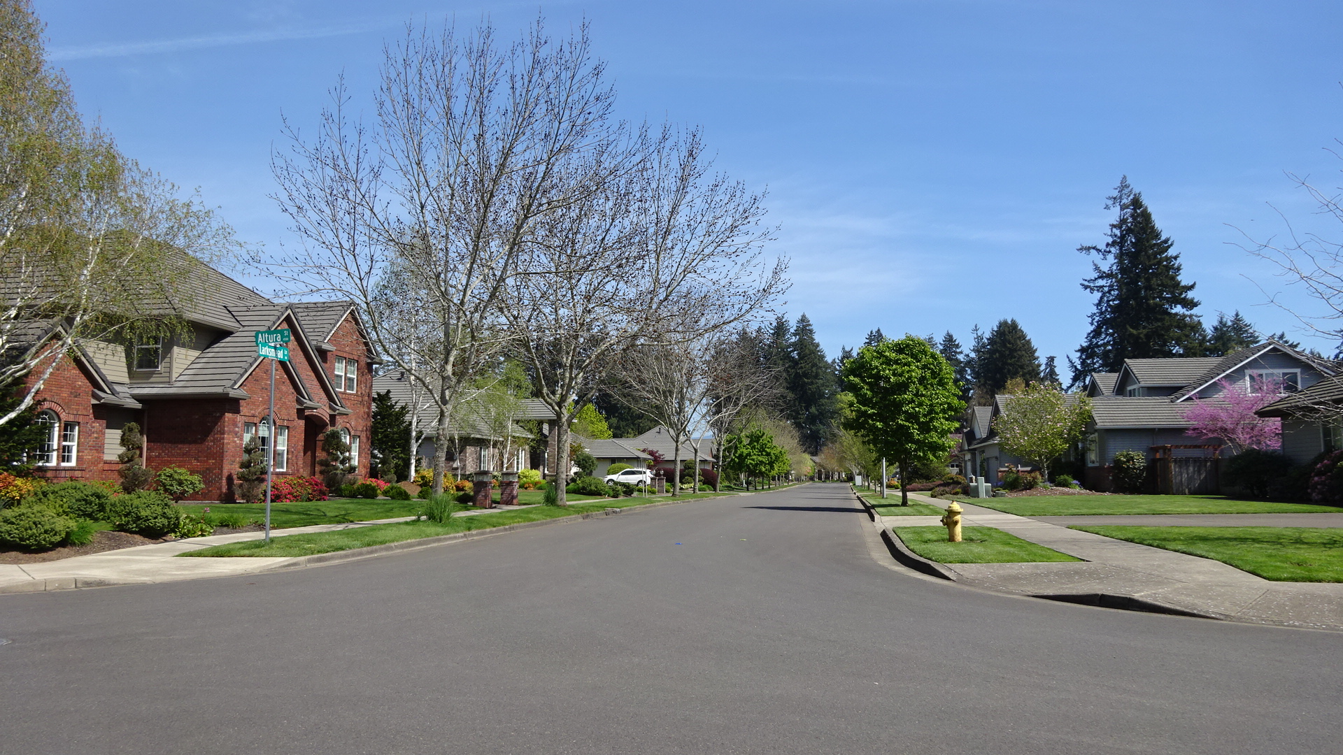 Willow Springs Eugene Oregon