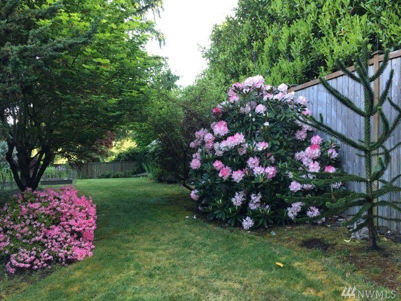 BackYard_Somerset Home