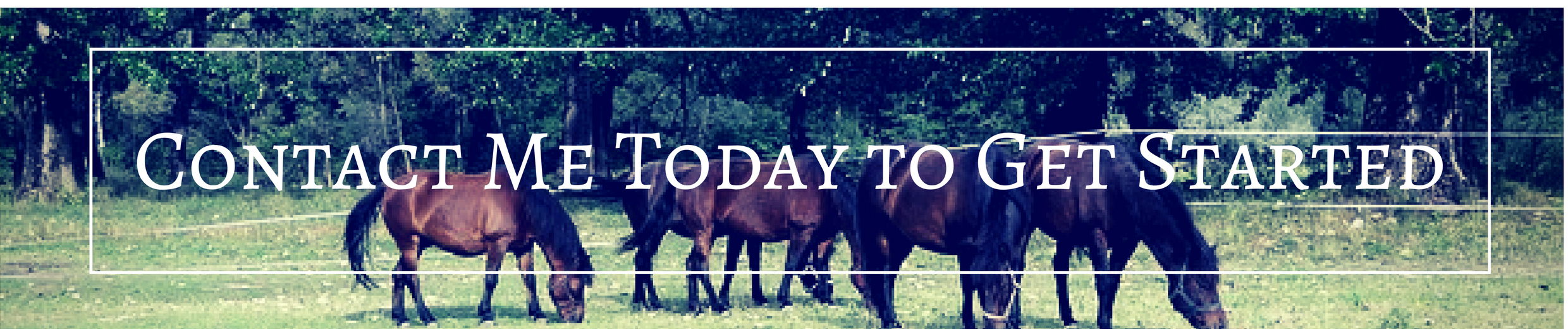 contact Kris for Equestrian property