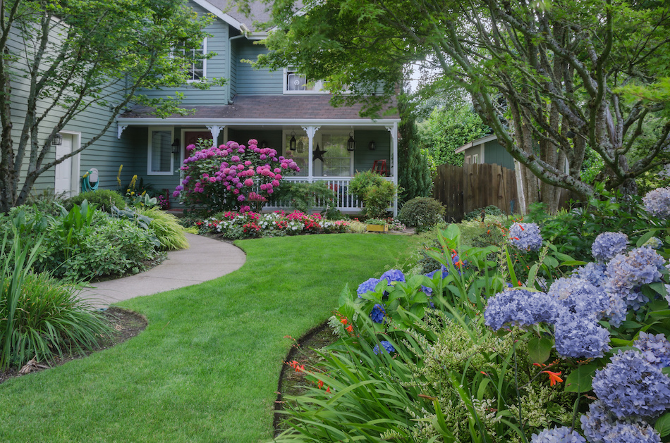What to Consider When Landscaping a Yard