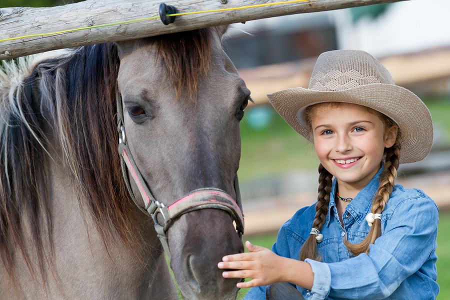 Ride A Horse Through Back Country Cave Creek Real Estate