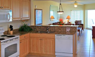 image of the typical kitchen in the units
