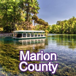 Marion County Florida Homes for Sale