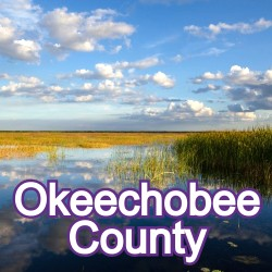 Okeechobee County Florida Homes for Sale