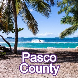 Pasco County Florida Homes for Sale