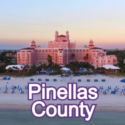 Pinellas County Florida Homes for Sale