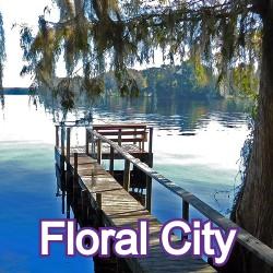 Floral City Florida Homes for Sale