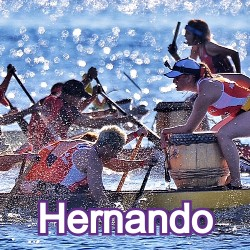 Hernando Florida Homes for Sale