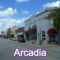 Arcadia Florida Homes for Sale