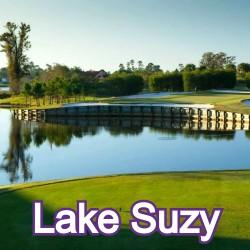 Lake Suzy Florida Homes for Sale