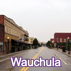 Wauchula Florida Homes for Sale