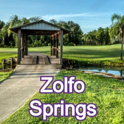 Zolfo Springs Florida Homes for Sale