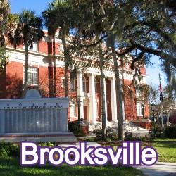 Brooksville Florida Homes for Sale