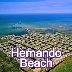 Hernando Beach Florida Homes for Sale