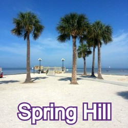 Spring Hill Florida Homes for Sale