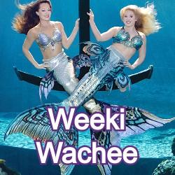Weeki Wachee Florida Homes for Sale