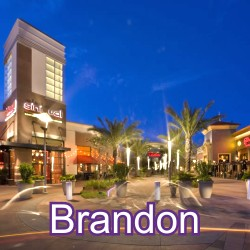 Brandon Florida Homes for Sale