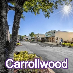 Carrollwood Florida Homes for Sale