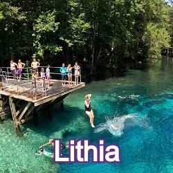 Lithia Florida Homes for Sale