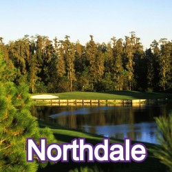 Northdale Florida Homes for Sale