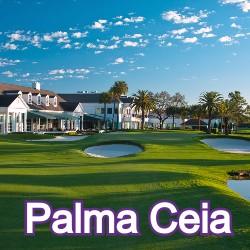 Palma Ceia Florida Homes for Sale