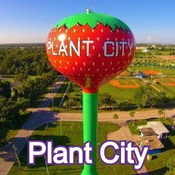 Plant City Florida Homes for Sale