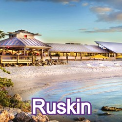 Ruskin Florida Homes for Sale