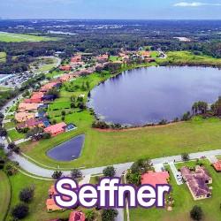 Seffner Florida Homes for Sale