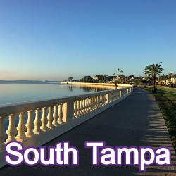 South Tampa Florida Homes for Sale