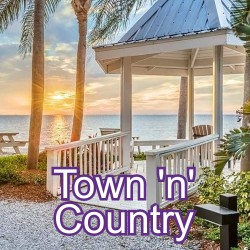 Town N' Country Florida Homes for Sale
