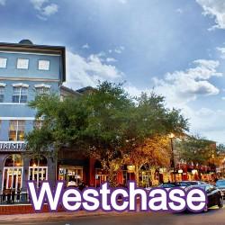 Westchase Florida Homes for Sale