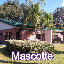 Mascotte Florida Homes for Sale