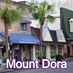 Mount Dora Florida Homes for Sale