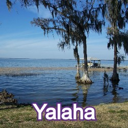 Yalaha Florida Homes for Sale