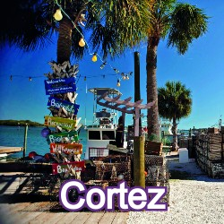 Cortez Florida Homes for Sale