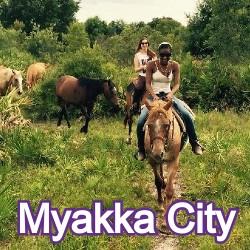 Myakka City Florida Homes for Sale