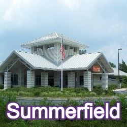 Summerfield Florida Homes for Sale