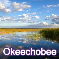 Okeechobee Florida Homes for Sale