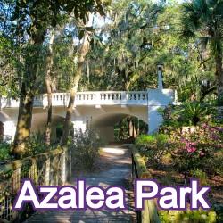 Azelea Park Florida Homes for Sale