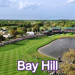 Bay Hill Florida Homes for Sale
